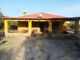 Finca rústica en venta en calle Trigueros, Trigueros
