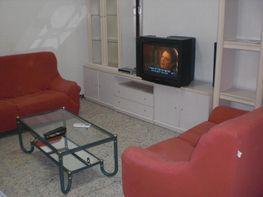 Chalet en alquiler en calle Avenida de Arcos, Centro en Jerez de la Frontera