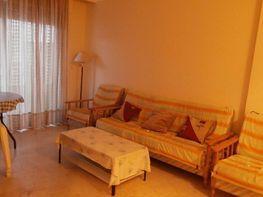 1  - Apartamento en venta en Playa del Cura en Torrevieja - 180195699