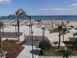 1  - Apartamento en venta en Torrelamata - La Mata en Torrevieja - 180196092