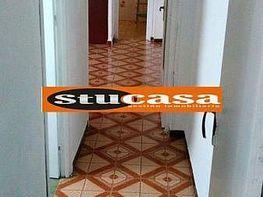 Foto - Piso en venta en calle Carolinas Bajas, Carolinas Bajas en Alicante/Alacant - 380148454