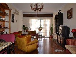 Wohnung in verkauf in calle Ancha, Palma del Río - 295002790