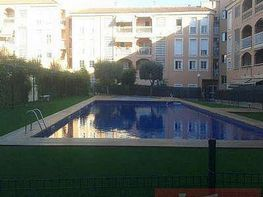 Piso en alquiler en calle Los Olivos Eusebio Estada, Son Oliva en Palma de Mallorca - 249980289