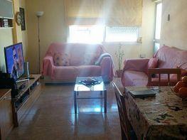 Petit appartement de vente à calle Heura, Rafal Vell à Palma de Mallorca - 188943934