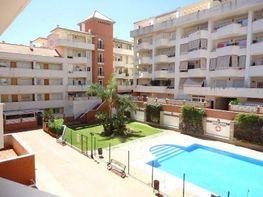 Wohnung in verkauf in calle Avenida del Mar, Estepona - 383499654