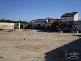Grundstück in verkauf in Dos Hermanas - 214198482