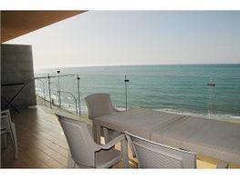 Apartment in miete füer die season in calle Maritimo, Torreblanca in Fuengirola - 263664221