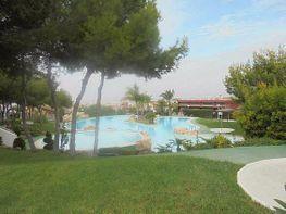 Fantástica piscina comunitaria rodeada de vegetación - Bungalow en venta en calle Monte de Santa Pola, Santa Pola - 209496483