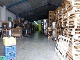 Gewerbehalle in verkauf in Recas - 278189404