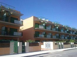 Imagen del inmueble - Apartamento en venta en calle Eucaliptus, Amposta - 272274439
