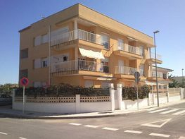 Imagen del inmueble - Apartamento en venta en calle Eucaliptus, Amposta - 272275258