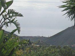 Foto1 - Terreno en venta en Ojén - 312186826