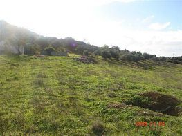 Foto1 - Casa rural en venta en Casares - 312186841
