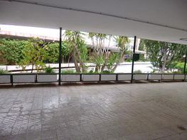 Local comercial en alquiler en calle De Denia, Vistahermosa en Alicante/Alacant - 333525125