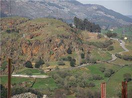 Grundstück in verkauf in Villaescusa - 396753657