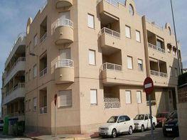 Wohnung in verkauf in Montesinos (Los) - 336667649