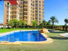 Apartament en venda calle Guardamar, Guardamar del Segura - 204650127