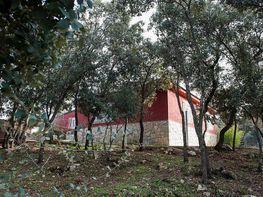 Casa en venta en calle Los Chopos, Hontoba - 371563762