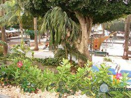 Foto1 - Piso en venta en Puerto de la Cruz - 207347438