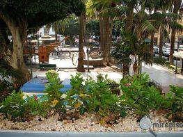 Foto1 - Piso en venta en Puerto de la Cruz - 207347507
