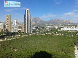 Foto - Apartamento en alquiler en calle Esperanto, Levante en Benidorm - 406929116