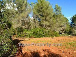 Grundstück in verkauf in calle Cala Llonga, Ibiza/Eivissa - 211047794
