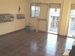 Wohnung in verkauf in calle Almirante Argandoña, La Palmera in Sevilla - 343437736
