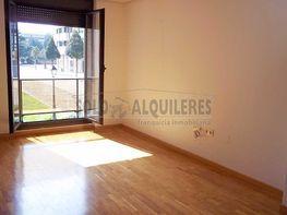 100_8140.jpg - Piso en alquiler en Milán-Pumarin-Pontón de Vaqueros en Oviedo - 411538590