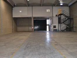Capannone industriale en affitto en calle Torrent Matre, El Sector Grab en Cervelló - 249982272