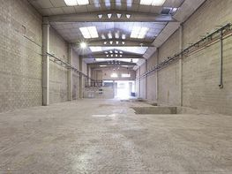 Planta baja - Nave industrial en alquiler en calle Murcia, Sant Boi de Llobregat - 281089026