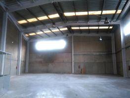 Planta baja - Nave industrial en alquiler en calle Montserrat, Can Bros en Martorell - 350720131