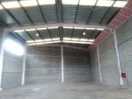 Planta baja - Nave industrial en alquiler en calle Montserrat, Can Bros en Martorell - 350720344