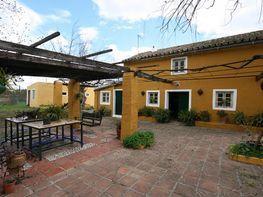 Finca rústica en venta en calle En El Campo, Coín
