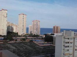 Appartamento en affitto en calle Avenida Fabraquer, Playa Mucha Vista en Campello (el) - 225286716