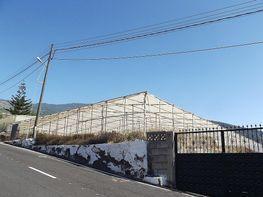 Grundstück in verkauf in Candelaria - 237289560
