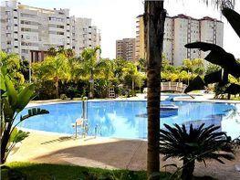 Apartament en venda Playa de Gandia a Gandia - 283607304