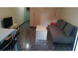 Apartamento en alquiler en calle Luis Vives, Arroyo de la Miel en Benalmádena