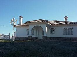 Chalet - Chalet en venta en Alhaurín de la Torre - 355866872