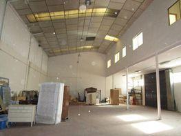 Nave industrial en alquiler en calle , Ondarreta-Las Retamas-Parque Oeste en Alcorcón - 379790256