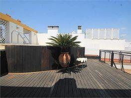 Dachwohnung in verkauf in San Vicente in Sevilla - 294512829