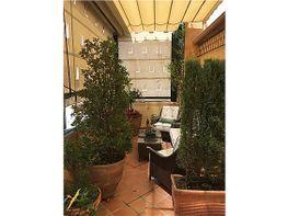 Dachwohnung in verkauf in San Lorenzo in Sevilla - 295475030