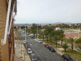 Wohnung in verkauf in calle Cortes Valencianas, El Toscar in Elche/Elx - 377354967