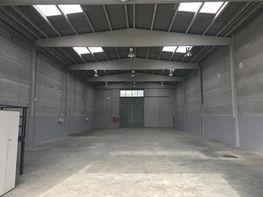 Detalles - Nave industrial en alquiler en calle Servero Ocha, Congost en Granollers - 411612814