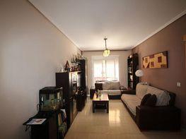 Pis en venda calle Avenida Pintor Rosales, Roquetas de Mar - 403114037