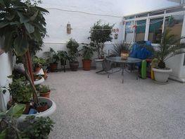 Foto - Piso en venta en El Raval - Centro en Elche/Elx - 342765959