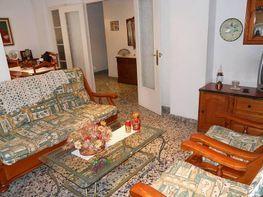 Foto - Piso en venta en Centro (Corazón de Jesus - Plaza Crevillente) en Elche/Elx - 342762467