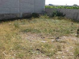 Foto - Solar en venta en calle Francesc Ezquerrer Antonio Marco o, Nules - 404531386