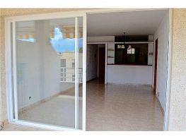 Petit appartement de vente à Calvià - 392289493