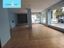 Foto - Local comercial en alquiler en calle Blas Infante, Zaidín en Granada - 385671293