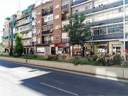 Piso en venta en Ronda en Granada - 336345145